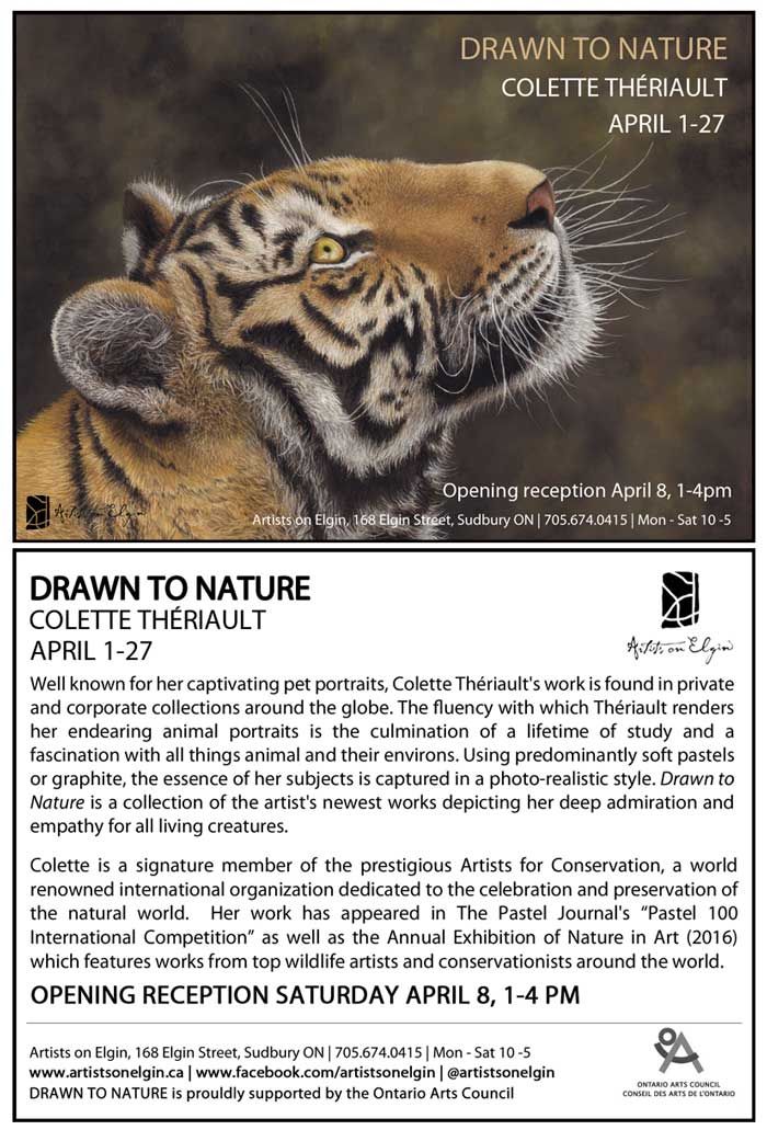 Drawn to Nature Solo Exhibit