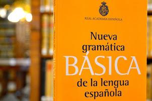 """""""La Nueva Gramática no es laxa, es un espejo de los hablantes"""""""