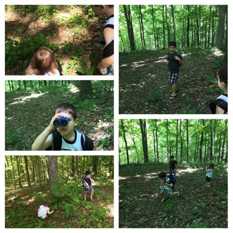 Apologia Exploring Creation Field Trip Journal