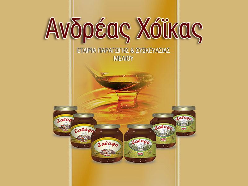 Ανδρέας Χόικας - ΜΕΛΙ  ΖΑΛΟΓΓΟ