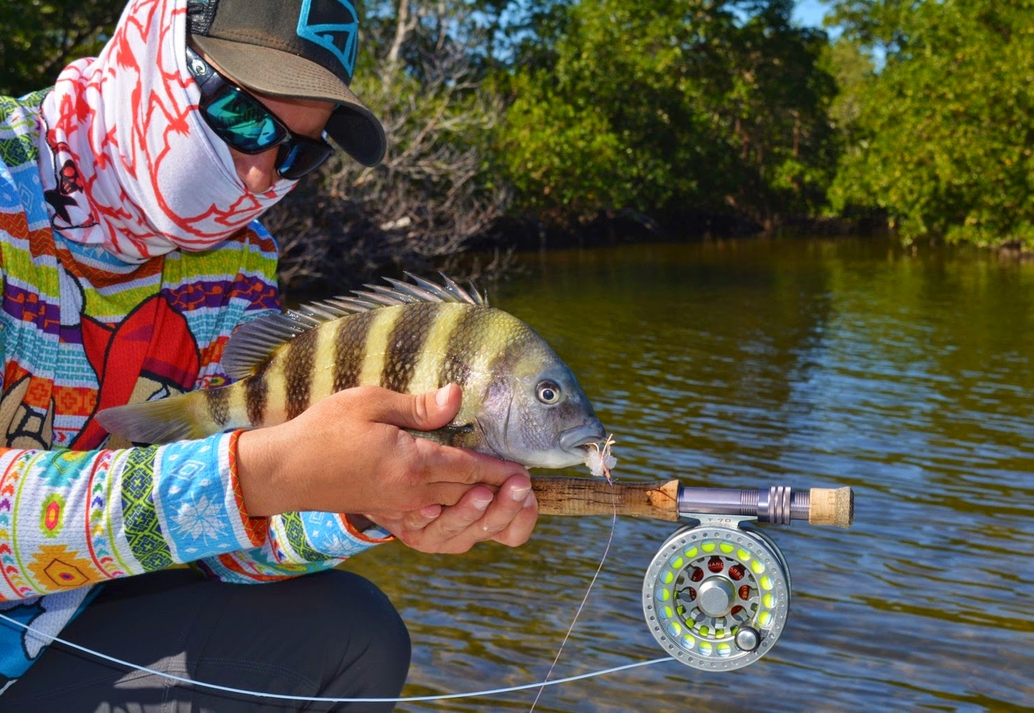 Sheepshead on Fly in Early Spring