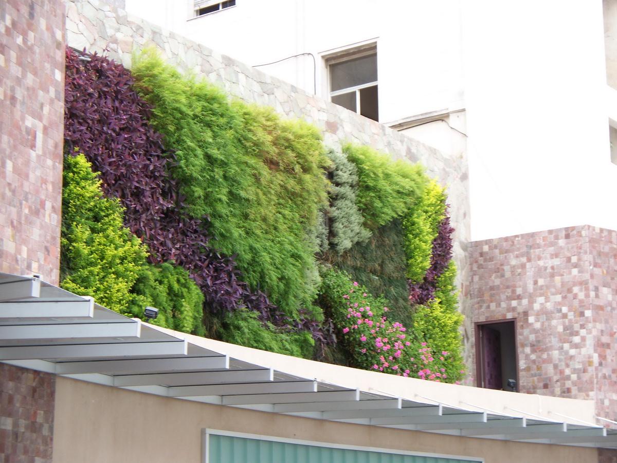 jardines verticales monterrey fotos de la plata paseo 8bis