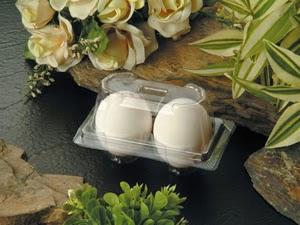 Khay nhựa đựng trứng 01