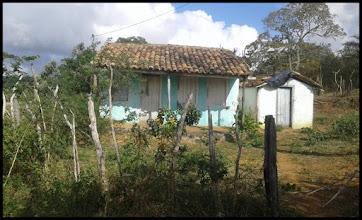 Vende-se uma propriedade rural entre Angico e Alagoinhas