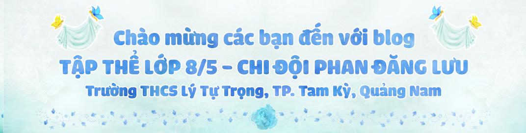 LỚP 8/5 - CHI ĐỘI PHAN ĐĂNG LƯU