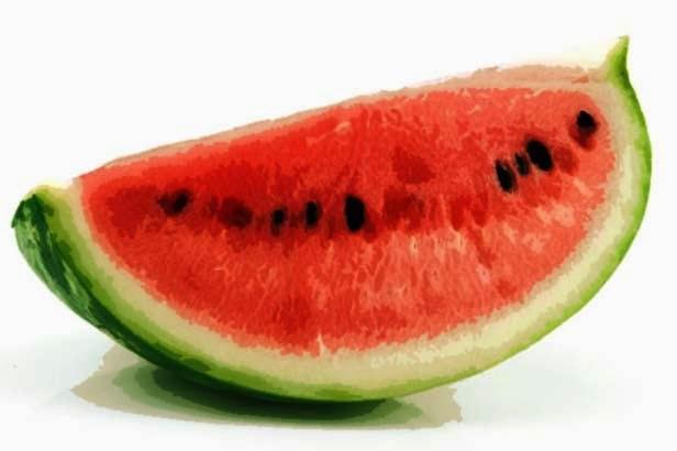 http://manfaatnyasehat.blogspot.com/2014/06/manfaat-buah-semangka-untuk-kesehatan.html