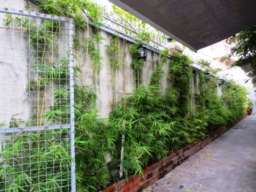green walls | Manufacturers Outdoor Furniture
