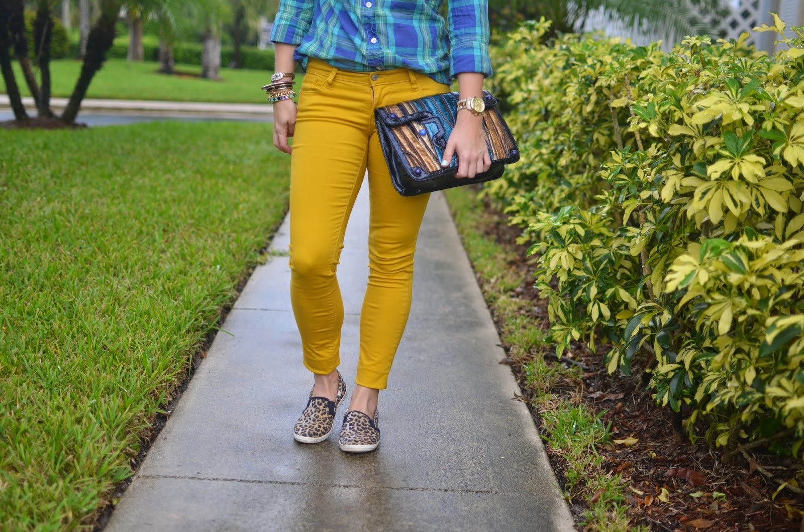 Mustard pants - plaid top - Snake print clutch - leopard slip on - arm party