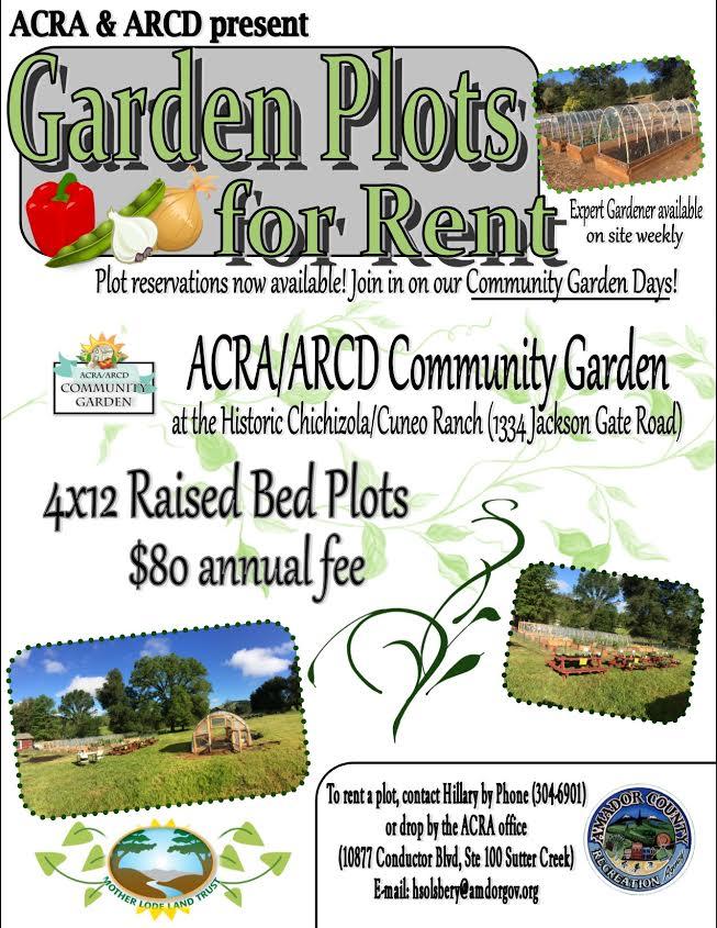 Garden Plots for Rent
