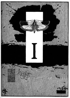 Peter+Koch+zebra-noise-i.jpg
