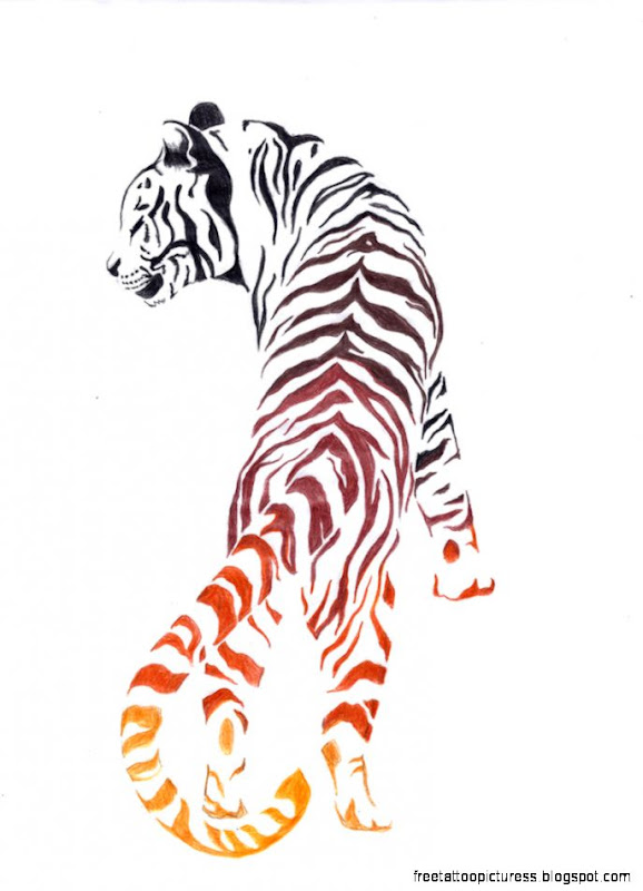 TIGER TATTOO  All New Pictures