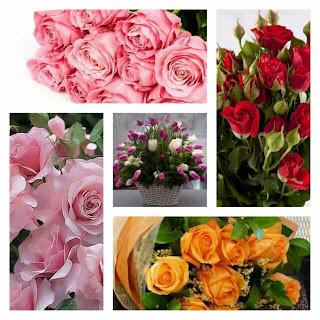 Muttertagsbilder Blumen