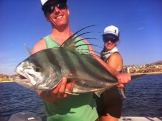 Baja anglers it 39 s rooster season in cabo for Cabo fishing seasons