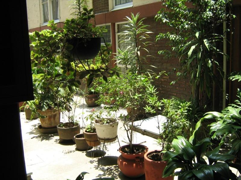 El cuexcomate jardines en macetas for Jardines en macetas
