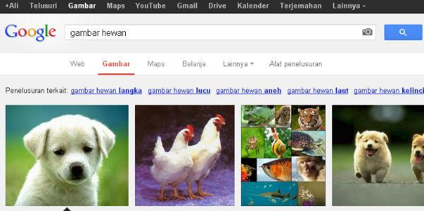 Berbicara Tentang Google Images