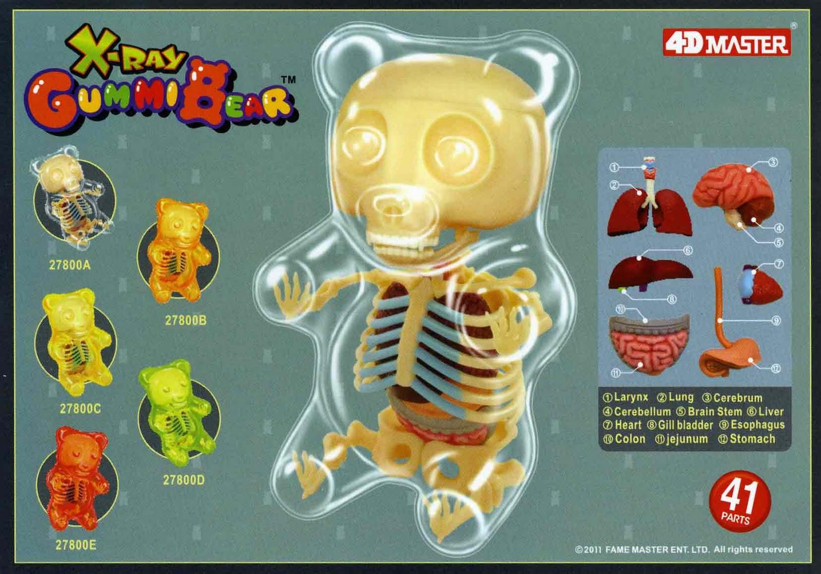 Moistproduction Gummi Bear Anatomy Toys Are Coming