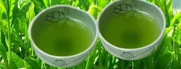 teh hijau, cara ampuh merampingkan tubuh, tubuh ramping, cara merampingkan tubuh, menurunkan berat badan, tips ramping, ramping alami, khasiat teh hijau, manfaat teh hijau,