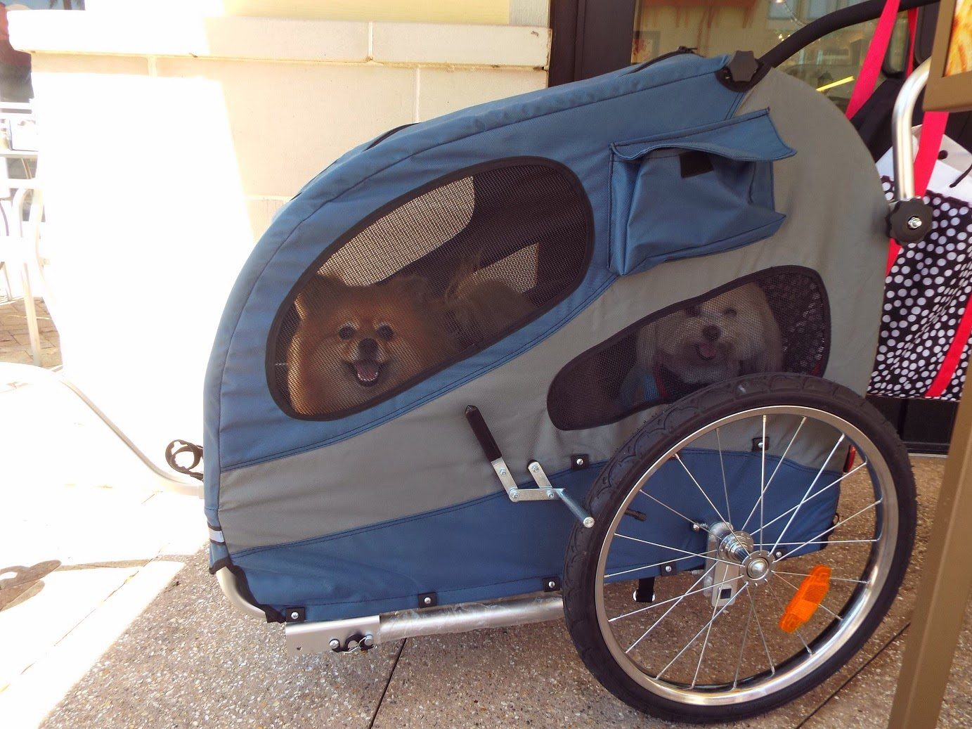 Pepper S Paws Solvit Houndabout Ii Large Pet Stroller Product
