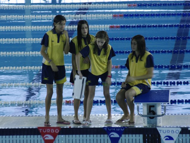 Club natacion benicarlo cnb 1 control provincial - Piscina olimpica castellon ...