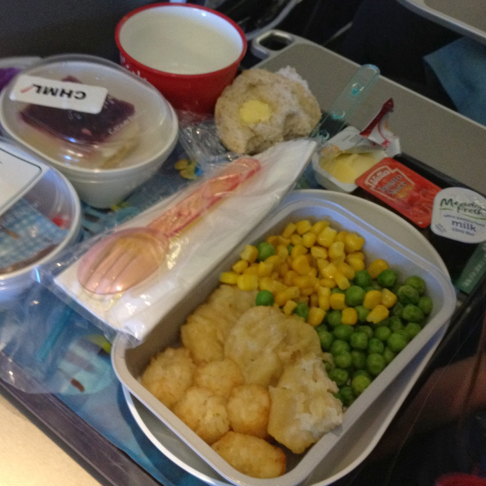 Cathay Pacific Children's Meal