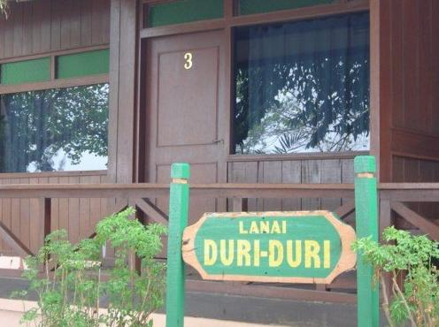 Cottage Duri Duri pulau Bidadari Resort