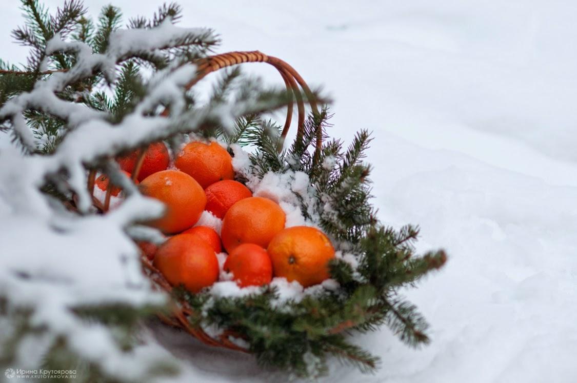 Картинки На Рабочий Стол Зима Мандарины