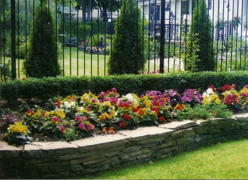flowers for flower lovers   flowers lawns