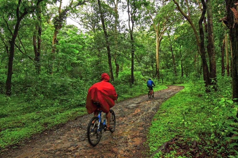 Coorg/Madikeri Monsoon Cycling