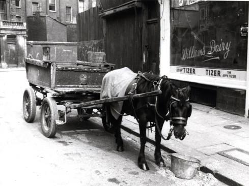 Kensington Liverpool Used Cars