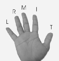 bass guitar code finger