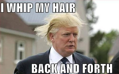 funny celebrity pictures i whip my hair back and forth redhotpogo i whip my hair back and forth