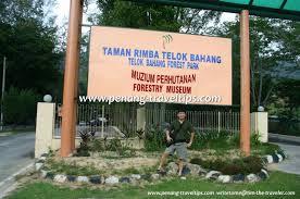 TAMAN RIMBA TELOK BAHANG
