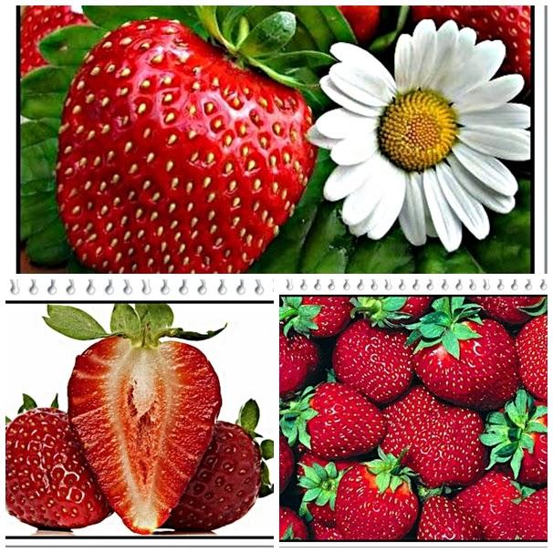 manfaat buah stroberi merah