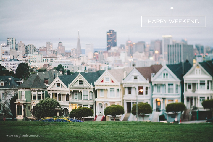 """Painted Ladies at twilight"""