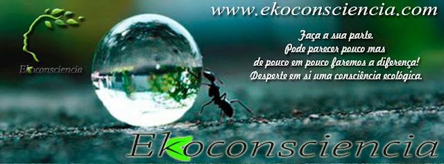 Ekobrazil EkoConsciencia Produtos Limpeza Ecológica