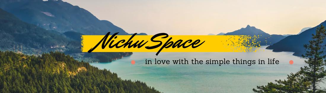 NichuSpace