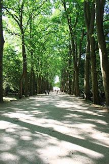 Château de Chenonceau: allée d'honneur