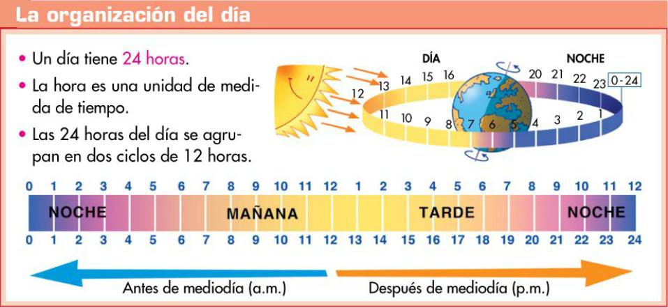http://www.primerodecarlos.com/TERCERO_PRIMARIA/enero/Unidad_7/mates/actividades/dia_horas/visor.swf