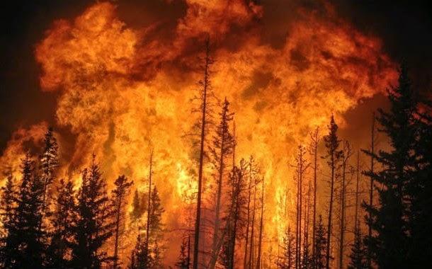 os piores incêndios florestais