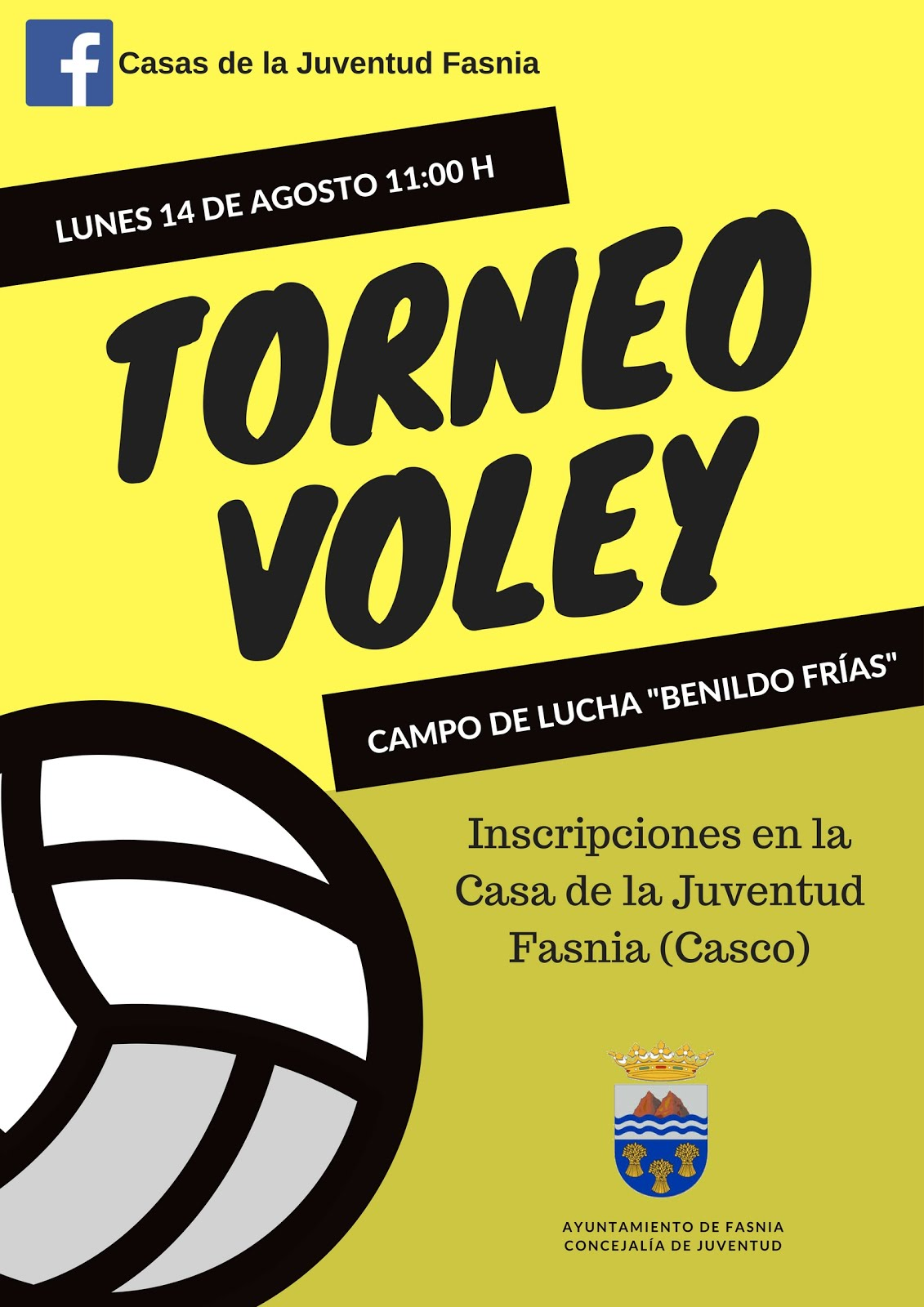 TORNEO VOLEY
