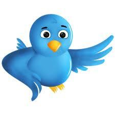 Pájarito de twitter volandhttp://www.blogger.com/img/blank.gifo