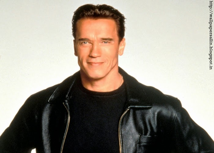 arnold wallpaper hd
