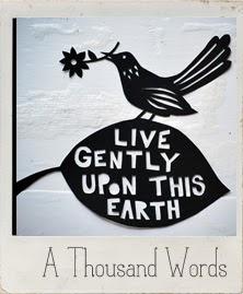 http://a-thousand-words.tumblr.com/