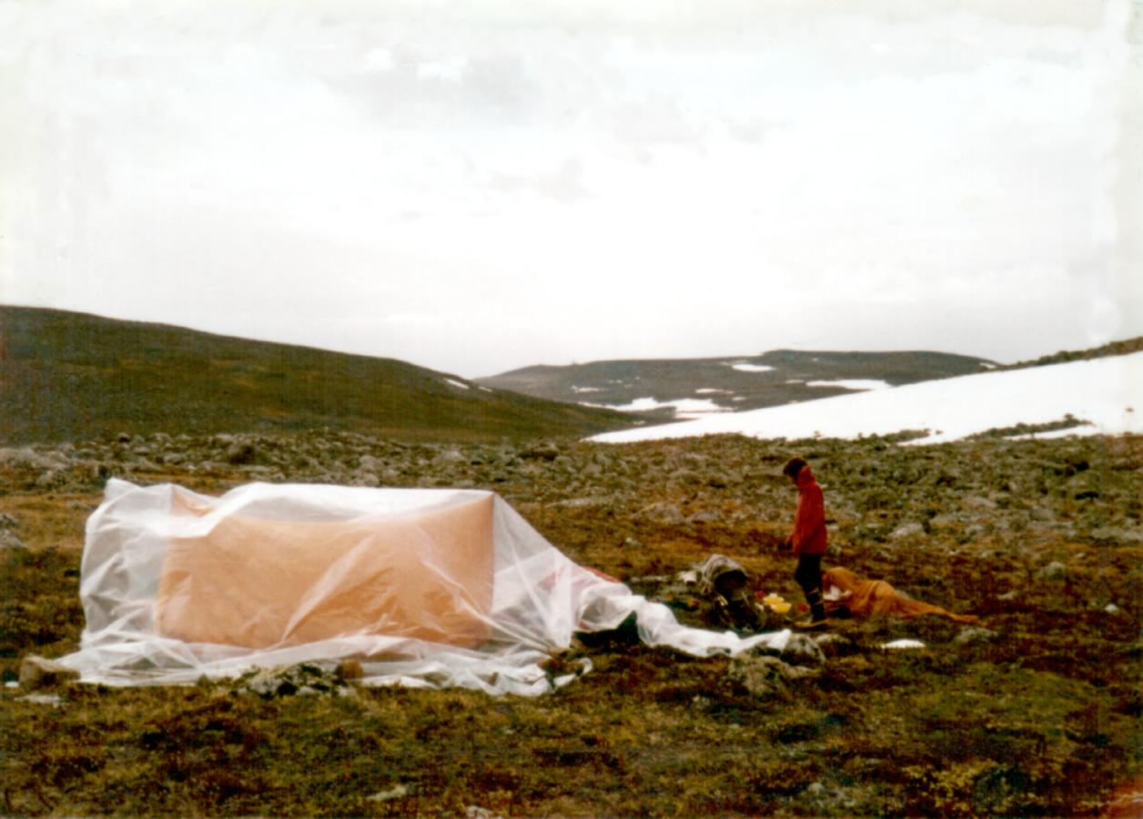 1973-07-Yliperä