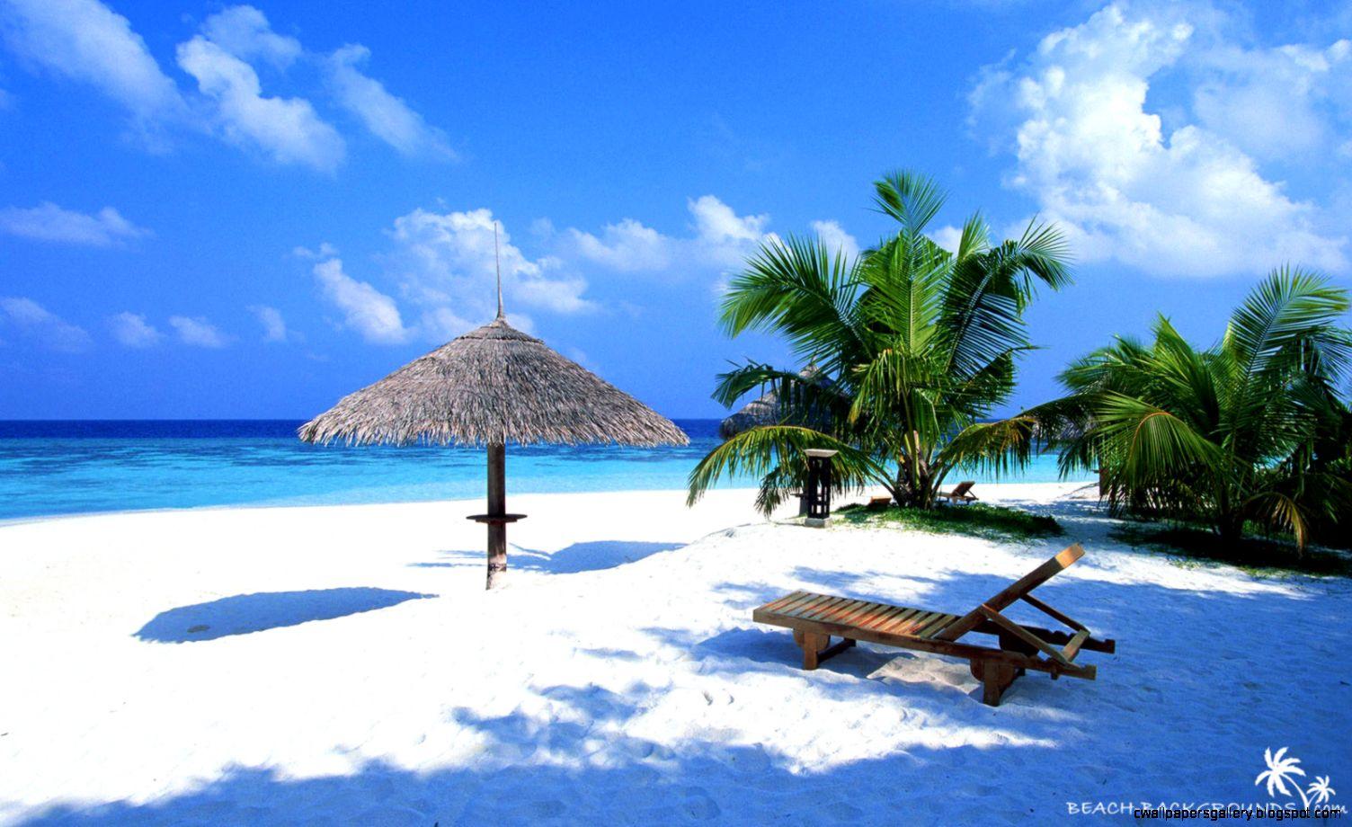 tropical beach wallpaper   o