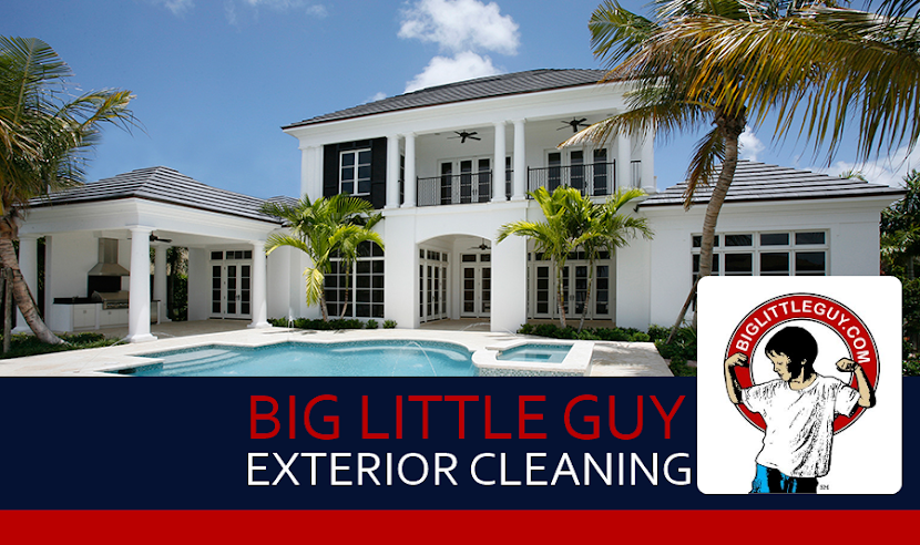 Big Little Guy LLC - Vero Beach, FL: Pressure Washing, Window Cleaning, Roof Cleaning and More
