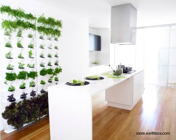 Arquitectura de casas jardines peque os verticales for Jardin vertical cocina