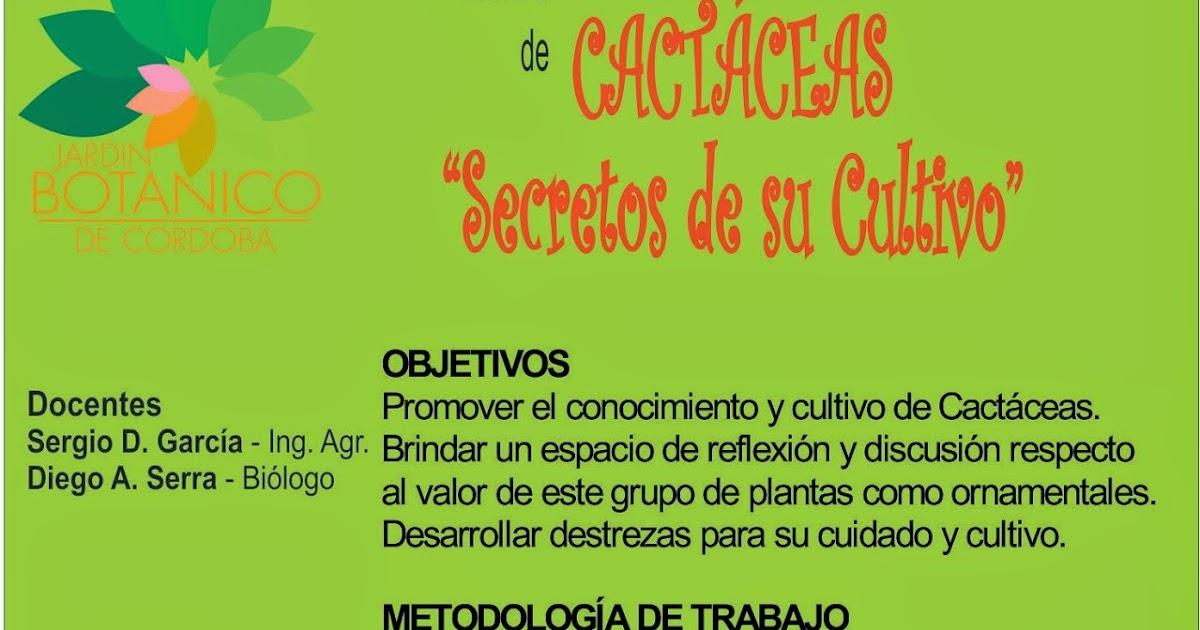 Jard n bot nico de c rdoba mayo curso de cact ceas for Jardin botanico cursos