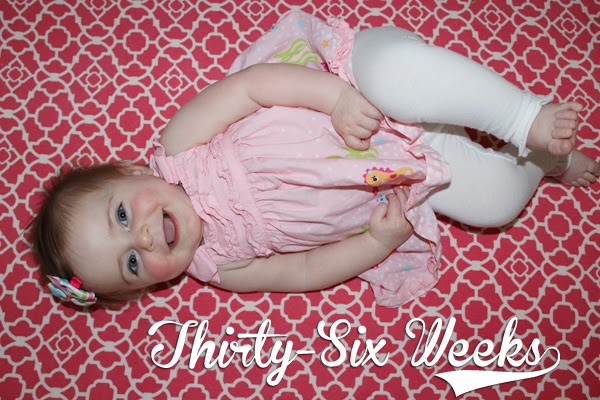 http://meetthegs.blogspot.com/2014/03/lilly-anne-36-weeks.html