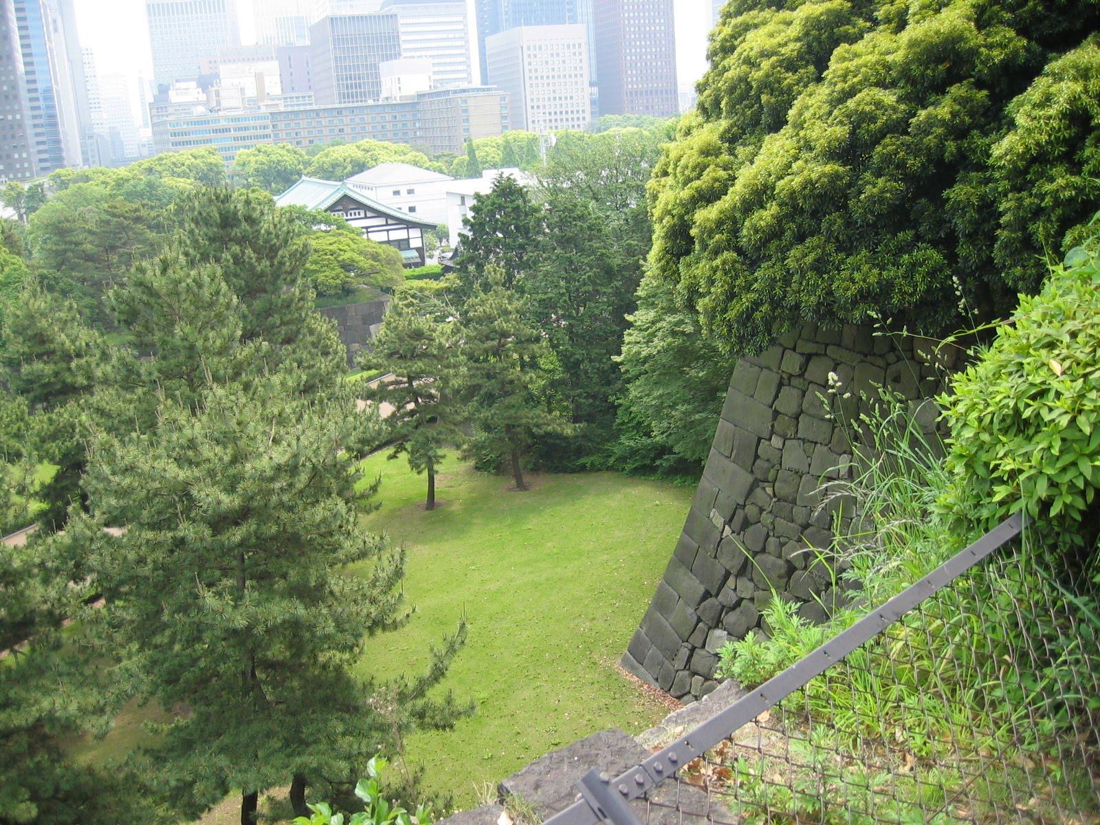 Matsu bonsai le jardin du palais imp rial et son mus e for Au jardin du port le palais